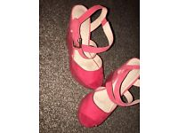 Coral Wedges from Office