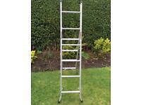 Step ladder 3 way combination