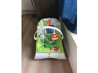 Fischer Price Baby Bouncer