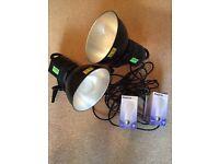Lastolite RayD8 c3200 studio lamps