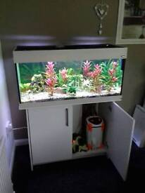 200 l white fish tank and stand