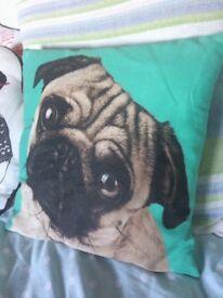 Cute pug cushion