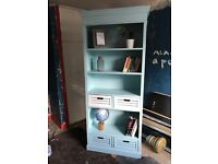 Tall Duck Egg Blue Bookcase