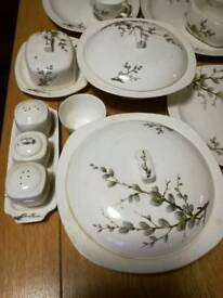 Midwinter Staffordshire porcelain set