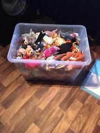 Box of ty bears
