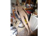 mannequin dummy