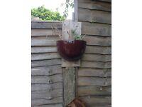 Garden wall planters