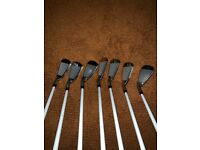 Nike vapour speed irons