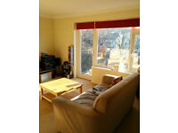 To share, a large airy flat near Preston Park
