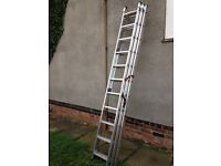 Brand new hailo 3x11 Afram ladders