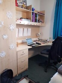Room in University of Nottingham Student Self-Catered Accommodation flat (Broadgate Park)