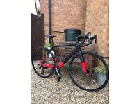 2017 Tifosi Andare Full Carbon Road bike with Disc Brakes. 2 months old