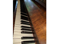 Nice ,Excellent Piano ,Only Needs Tunning