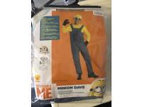 Minion Dave Child Fancy Dress Costume