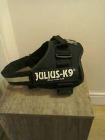 K9 julius harness