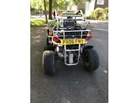 Quadzilla PGO 250R Bug-Rider