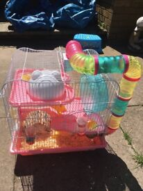Hamster cage & hamster & accessories