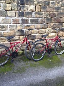 His and hers bikes top bikes