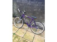 Womens Purple Apollo Rage Mountain Bike (NEW BRAKES)