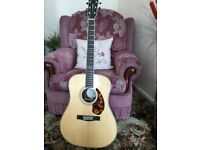 Fender pm1 limited Dreadnought guitar