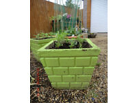 Green concrete containers with marigolds