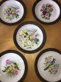 Hornsea Contrast and vitramic plates, vintage 70s floral art plates