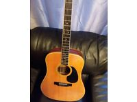 Tokai Cats Eyes acoustic Guitar made in Japan ..vintage.