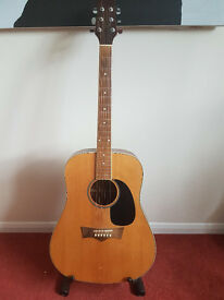 Briarwood (Peavey) Acoustic Guitar - Solid Top