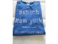 Never worn!!Abercrombie & Fitch boys lightweight ,blue long sleeved top -age 16