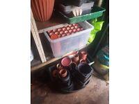 Plant pots and potting pots