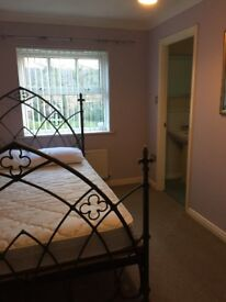 LARGE DOUBLE ROOM ENSUIT IN HOUSE SHARE IN DEREHAM TOWN