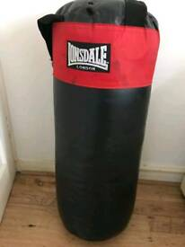 Punch bag and speed ball