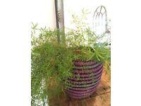 Handmade African Storage Basket