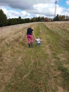 Looking for hay fields to be cut June 2019