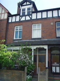 1 bedroom s/c flat. Has an old feature fireplace, large kitchen, bathroom with a shower and a bath.