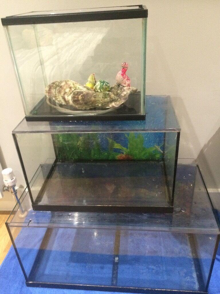 Aquarium fish tank for sale in london - 25l Aquarium Fish Tank For Sale Great Condition