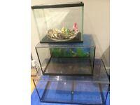 25L Aquarium/Fish Tank For Sale - Great Condition