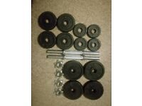 York Fitness Cast Iron Dumbbell Spinlock Set of weights