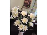 Lovely very tall Vase + Flowers £10 Bearsden