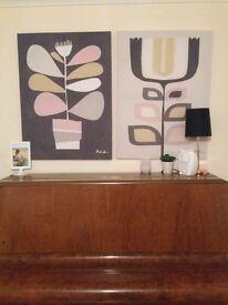 Pair of gorgeous Next canvas pictures current season very large