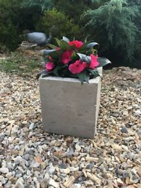 Chic Grey Concrete Cube Planter for Garden Or Indoor use.