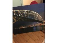 A beautiful painting,excellent Xmas gift .£15.00 each or £25.00 for both