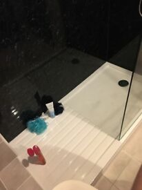 Black marble wet wall for bathroom
