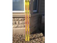 Brand New Skis for sale