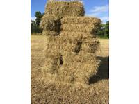 Small bale hay for sale