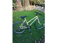 "Carrera mountain bike, full size 17"" frame"