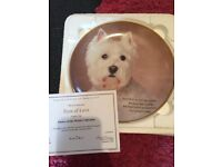 All 12 of the collectible Paul Doyle Westie plate collection and One out of the poetry collection