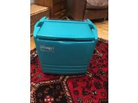 Electric Cooler (camping or outdoor). Excellent condition.
