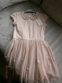 Dusky pink dress, bnwt, sequins, flowers & butterflies - age 5-6 years