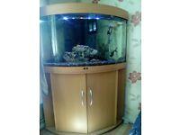 190l juwel tank & unit